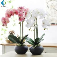 63cm Height Artificial Potted Plants , Fake Phalaenopsis Orchid 5-10 Years Life for sale