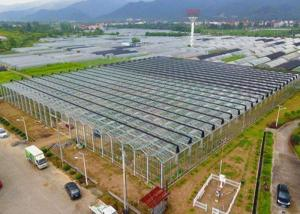 Quality Irrigation Clear Glass Tomatoes Shade Greenhouse for sale