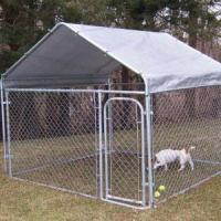 Where Can I Find Cheap Dog Kennels