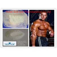 Buy cheap Arimidex Anti Estrogen Medication Anabolic Steroids For Bodybuilding 120511-73-1 product