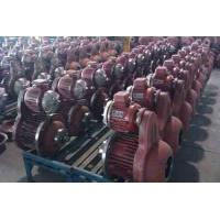 Quality MD Double speed hoisting motor  for sale