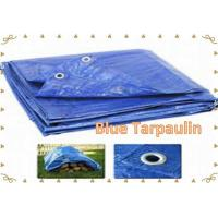 Quality Blue Tarpaulin Blue PE Tarp  Blue Tarp Cover   Economy Blue Poly  Tarp for sale
