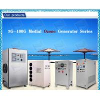 China Automatic air dryer Ceramic Ozone Generator Water Purification For Fruits on sale