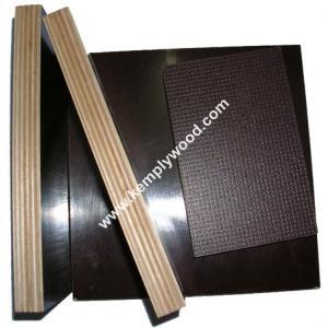 Quality Anti Slip Marine Plywood / Anti-Slip Film Faced Plywood /One side anti slip film faced plywood for sale