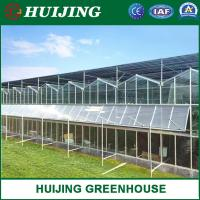 Quality High Quality Venlo Multi-Span Glass Greenhouse Hydroponic System Vegetable/Strawberry/Cucumber Automatic Climate Control for sale