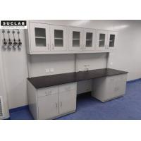 Alkali Proof Lab Systems Furniture Wall Bench 1.2 Mm Thick Steel Body And Cabinet