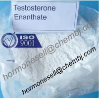 Buy cheap Testosterone enanthate Muscle and Strength gain Testosterone Hormone male hormone steroids product