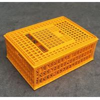 China Brand new platic animal transport cage with high quality on sale