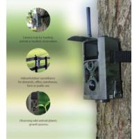Quality Full hd 3g hunting camera , security weatherproof wild game camera wide view for sale