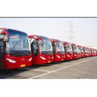 Quality Yutong Kinglong Higer Foton bus for sale from shanghai china second hand buses market for sale