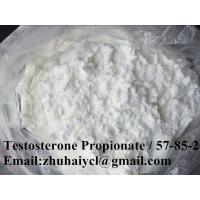 High purity Testosterone Propionate Test P CAS 57-85-2 Raw Steroid Hormone Powder