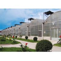 Quality Eco Friendly Plastic Garden Greenhouse Galvanized Steel Tube Frame Structure for sale