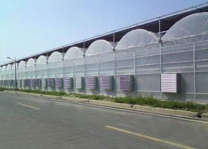 Quality Cooling Plastic Film Vegetable 10m Multi Span Greenhouse for sale
