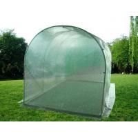 Quality Walk-in steel tube greenhouse (HX54026A) for sale