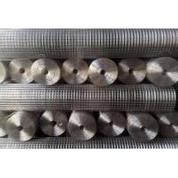 China Hot dipped 2x2 galvanized welded wire mesh panel and roll on sale