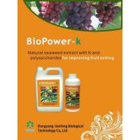 BioPower-k High Potassium Seaweed Organic Liquid Fertilizer