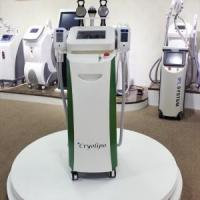 Quality Cooling Freezing Cryolipolysis Freeze Fat Machine Cryolypolysis for sale