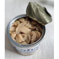 Quality 580ml 720ml Grade A Canned Champignon Mushroom With Salty Flavor for sale