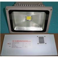 Quality White 10W - 40W Battery Powered Emergency Lights Led 50Hz - 60Hz , Lithium Ion Battery for sale