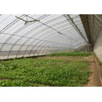 Quality Assembled Solar Greenhouse Steel Pipe Single Tunnel For Seeding / Planting for sale