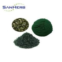 Quality 100% Pure Organic High Protein Spirulina Powder From GMP Factory / Spirulina Platensis for sale