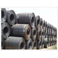 Quality Hot Rolled Steel Coil/Plate/Sheet for sale