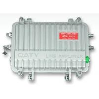 CATV Distribution Amplifier