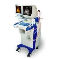 Quality PORTABLE ULTRASONIC B MODEL DIAGNOSE INSTRUMENT for sale