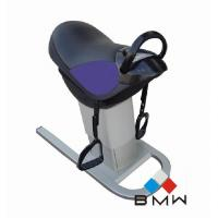 Quality B-F303 riding horse machine for sale