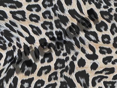 Buy Multi-color textile TB02 at wholesale prices