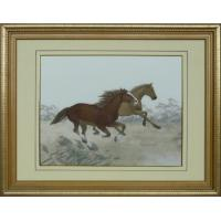 Quality Horse Horses Products name:Horses for sale