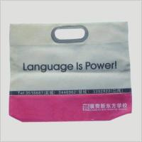 Quality 3007 Non-woven Bag for sale
