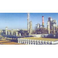 Quality Xinjiang Bagang Grid Project United Arab Emirates for sale