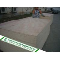 Your Position: xuzhou RuiLin Timber>Products