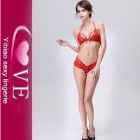 Quality Push Up Women Sexy Lingerie Bar Panty Set See Through Lace Sexy Bra Set for sale