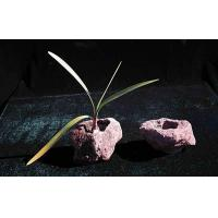China Lava Stone Planter on sale