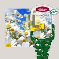 Quality Plant Labels plant hang tag plastic flower label for gardening for sale