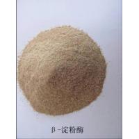 Quality amylase for sale