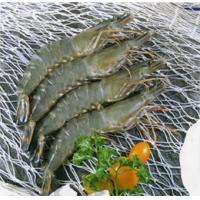 China Products HOSO Black Tiger Shrimp on sale