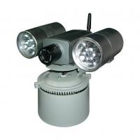 IP Camera with built-in TEL alarm and searchlight