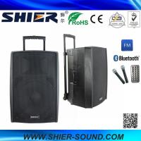 Quality 15 Inch 65W Class AB AK15-308 Best Trolley Rechargeable USB Speakers For Dancing for sale