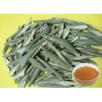 Quality Common Name: Olive leaf extract for sale