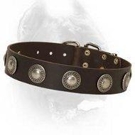 China Luxury Leather Dog Collar With Beautuful Decoration for Cane Corsos on sale