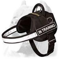 Quality Multifunctional Nylon Cane Corso Harness for sale