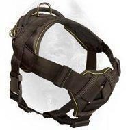 Quality Everyday Nylon Cane Corso Harness for Tracking / Pulling Activities for sale