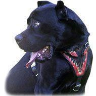 Quality Exclusive Padded Leather Dog Harness-Fire Flames Hand Painted Cane Corso Harness for sale