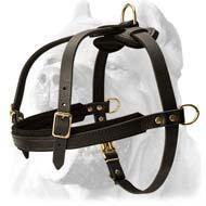 Quality Tracking/Pulling/Agitation Leather Dog Harness For Cane Corso for sale
