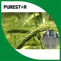 Quality Oat Beta glucan for sale