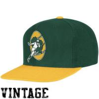 Buy cheap Mitchell & Ness Green Bay Packers Throwback XL Logo 2T Snapback Hat - Green/Gold from wholesalers