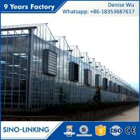 Quality SINOLINKING Agricultural polytunnel glass greenhouse Commercial for sale